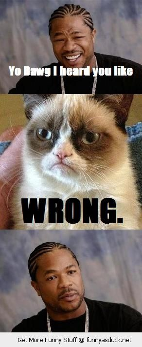 xibit yo dawg heard you like meme angry grumpy cat wrong animal lolcat funny pics pictures pic picture image photo images photos lol