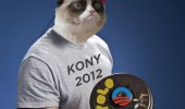 2012 new year nutshell grumpy cat kony gangnam style yolo funny pics pictures pic picture image photo images photos lol