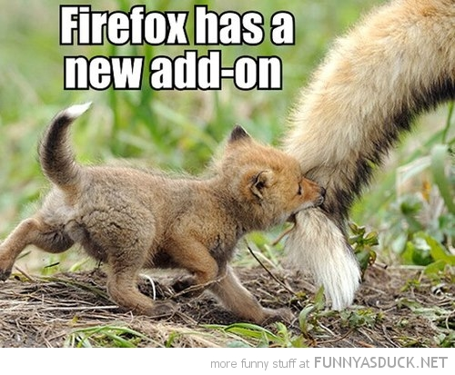 baby fox cub biting tail animal firefox new add on funny pics pictures pic picture image photo images photos lol
