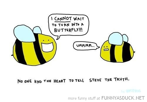 bee insect comic cant wait butterfly funny pics pictures pic picture image photo images photos lol