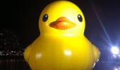 big massive rubber duck river water quack motherducker funny pics pictures pic picture image photo images photos lol