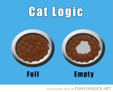 cat logic food bowl full empty funny pics pictures pic picture image photo images photos lol