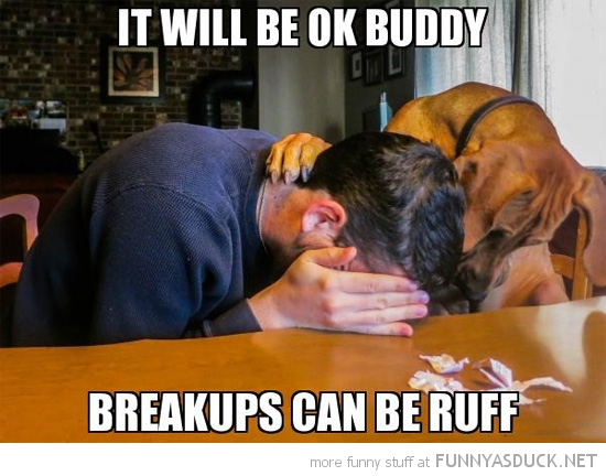 consoling dog animal man crying breakups rough ruff funny pics pictures pic picture image photo images photos lol