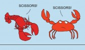 crab lobster playing rock paper scissors comic funny pics pictures pic picture image photo images photos lol