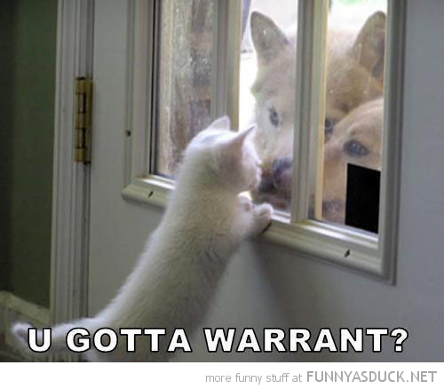 gotta warrant cat lolcat kitten animal dog door window funny pics pictures pic picture image photo images photos lol