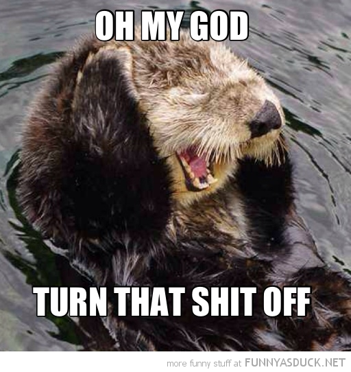 cute otter holding ears my god turn shit off animal funny pics pictures pic picture image photo images photos lol