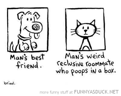 dog cat mans best weird friend comic funny pics pictures pic picture image photo images photos lol