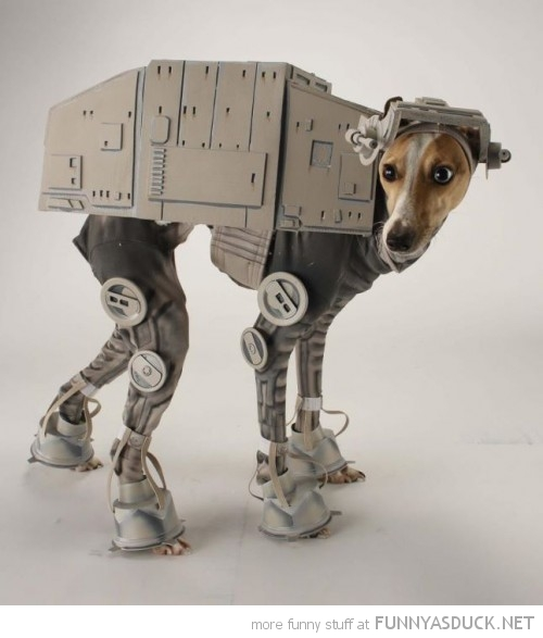 star wars dog costume at-at animal walker dress up haloween funny pics pictures pic picture image photo images photos lol