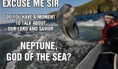 dolphin jumping water boat excuse me moment neptune god sea animal funny pics pictures pic picture image photo images photos lol