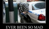 drunk man ever been so mad dump cop police car funny pics pictures pic picture image photo images photos lol