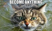 evil cat lolcat animal told me could be anything crocodile funny pics pictures pic picture image photo images photos lol
