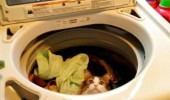 excuse me cat lolcat animal why put crap my hot tub washing machine dryer funny pics pictures pic picture image photo images photos lol