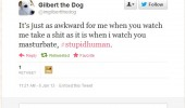 gilbert dog twitter tweet watch shit masturbate funny pics pictures pic picture image photo images photos lol