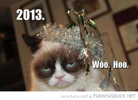 angry grumpy cat tard lolcat animal 2013 new year woo hoo funny pics pictures pic picture image photo images photos lol
