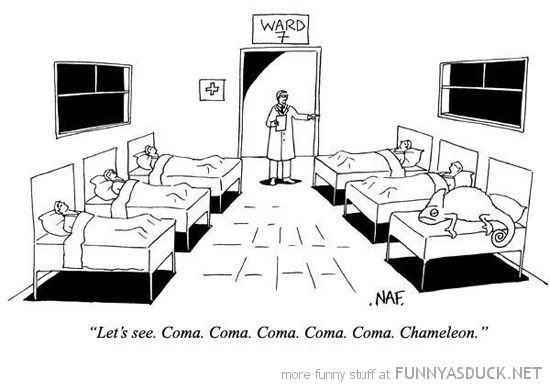 hospital comic coma chameleon funny pics pictures pic picture image photo images photos lol