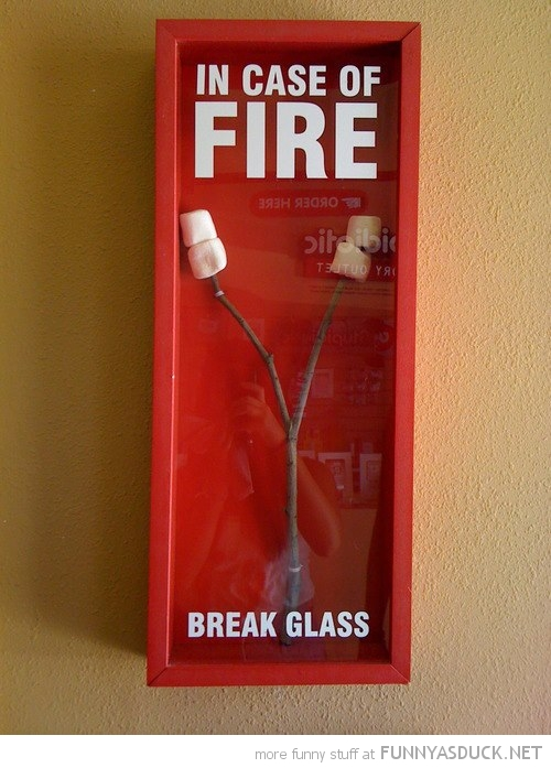 in case of fire break glass marshmallows stick funny pics pictures pic picture image photo images photos lol