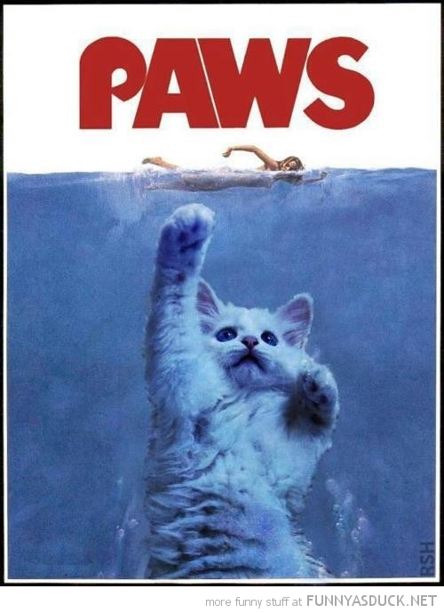 jaws movie poster parody cat lolcat animal paws funny pics pictures pic picture image photo images photos lol