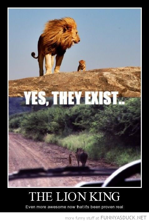 lion king they exist real disney movie film funny pics pictures pic picture image photo images photos lol