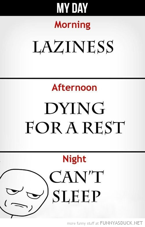 my day morning afternoon night laziness rest can't sleep meme rage comic funny pics pictures pic picture image photo images photos lol