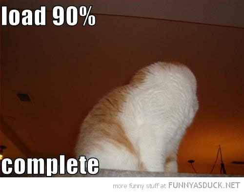 cat lolcat animal no head load 90% comment funny pics pictures pic picture image photo images photos lol