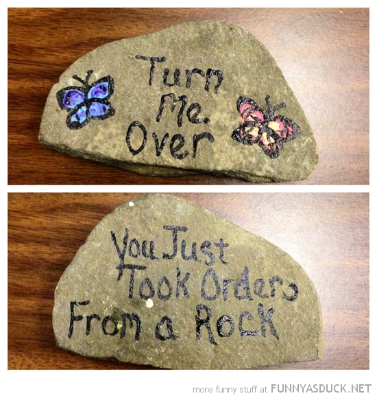 painted stone turn over took orders from rock funny pics pictures pic picture image photo images photos lol