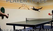 cat lolcat animal jumping ping pong table player three entered funny pics pictures pic picture image photo images photos lol