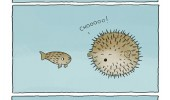 puffer fish animal comic freaking out funny pics pictures pic picture image photo images photos lol