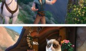 rapunzel disney tangled grumpy angry cat lolcat animal no funny pics pictures pic picture image photo images photos lol