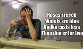 roses violets vodka cost less dinner tow poem depressed man sad funny pics pictures pic picture image photo images photos lol