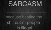 sarcasm quote beating shit people illegal funny pics pictures pic picture image photo images photos lol