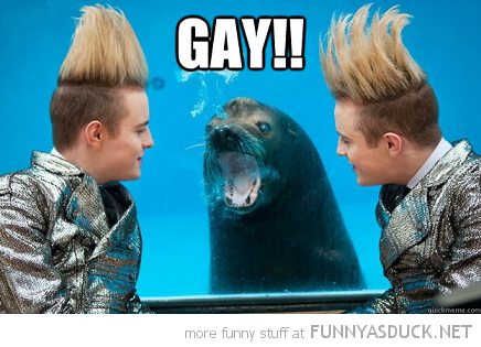 jedward seal gay animal zoo x-factor funny pics pictures pic picture image photo images photos lol