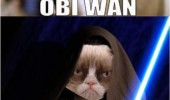 star wars grumpy angry cat lolcat animal help me obi wan leah no movie funny pics pictures pic picture image photo images photos lol