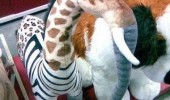 stuffed animal toy giraffe elephant cross funny pics pictures pic picture image photo images photos lol