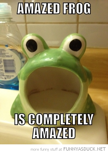 amazed frog soap holder bathroom ornament funny pics pictures pic picture image photo images photos lol
