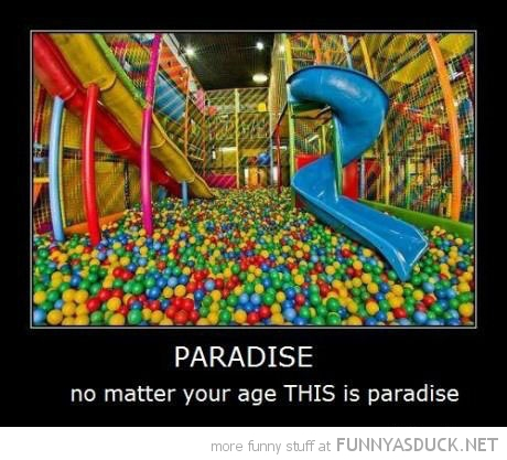 ball swamp play area paradise no matter what age funny pics pictures pic picture image photo images photos lol