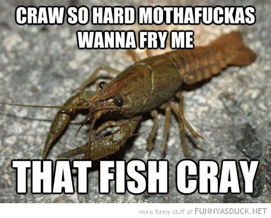craw so hard fry me that fish cray animals kayne west funny pics pictures pic picture image photo images photos lol