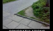 cut corner path grass congratulations saved 0.4 seconds funny pics pictures pic picture image photo images photos lol