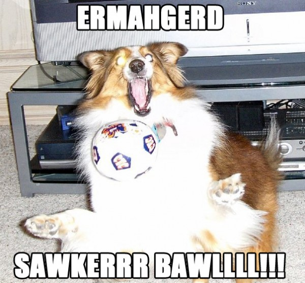 dog animal playing ball ermahgerd soccer football funny pics pictures pic picture image photo images photos lol