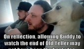 dog animal watching tv shocked ending old yeller funny pics pictures pic picture image photo images photos lol