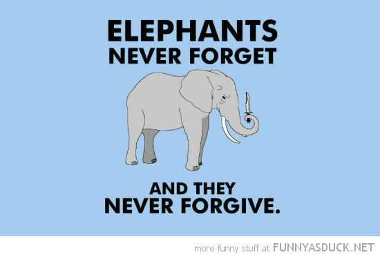 elephants never forget or forgive knife comic funny pics pictures pic picture image photo images photos lol