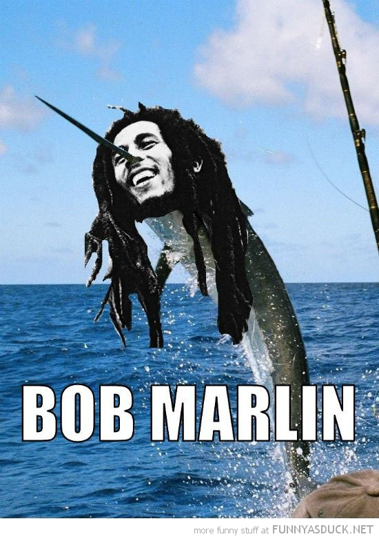 fish sea ocean bob marlin marley funny pics pictures pic picture image photo images photos lol