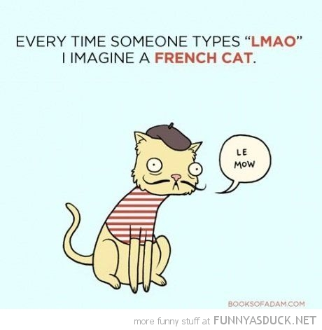 french cat comic lmao le meow funny pics pictures pic picture image photo images photos lol