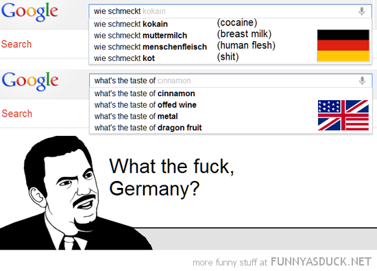 google search what's the taste of what the fuck germany meme funny pics pictures pic picture image photo images photos lol