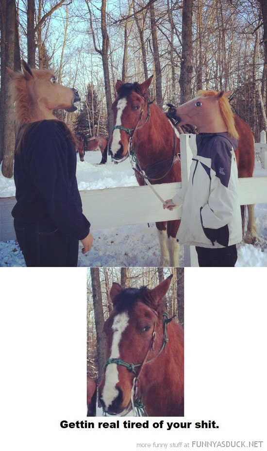 grumpy horse boys men masks animal real tired shit  funny pics pictures pic picture image photo images photos lol