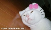 hello kitty costume cat dressed up death slow painful human funny pics pictures pic picture image photo images photos lol