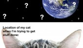 location of cat lolcat animal funny pics pictures pic picture image photo images photos lol