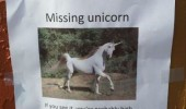 missing unicorn poster seen it you may be high funny pics pictures pic picture image photo images photos lol