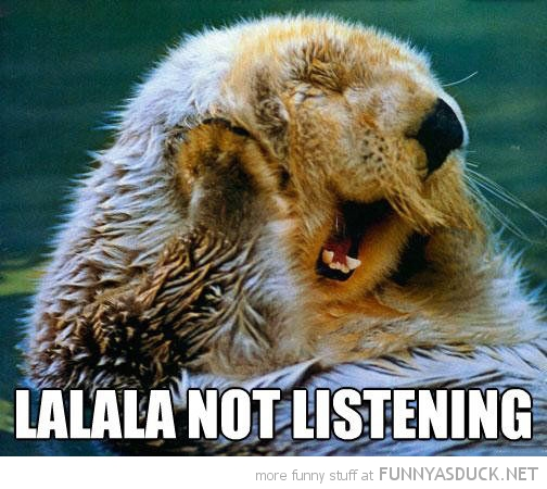 otter animals hands paws over ears lala not listening funny pics pictures pic picture image photo images photos lol