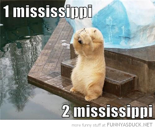 polar bear animal paws head hide seek 1 mississippi funny pics pictures pic picture image photo images photos lol