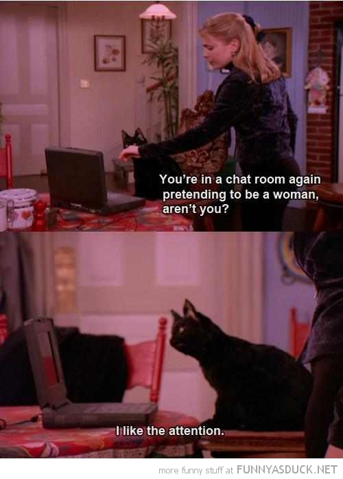 sabrina teenage witch tv scene cat chat room like attention pretend woman funny pics pictures pic picture image photo images photos lol